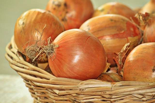 ONIONS…Tips, Tricks, Ideas