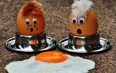 The Incredible Edible Egg – Did you Know?